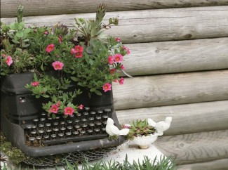 garden-ideas-to-im-yourself-make-flower-planting-old-typewriter