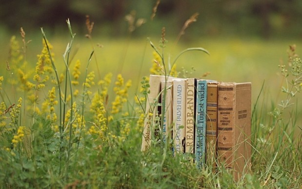 books & flowers